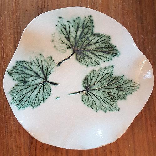 3 leaf plate