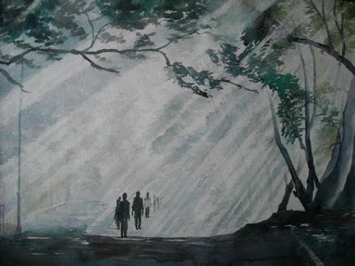 ray walk