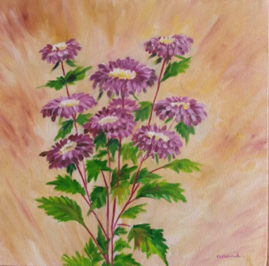 Asters n Morning Glory