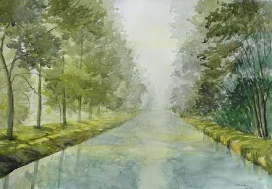 Foggy Canal