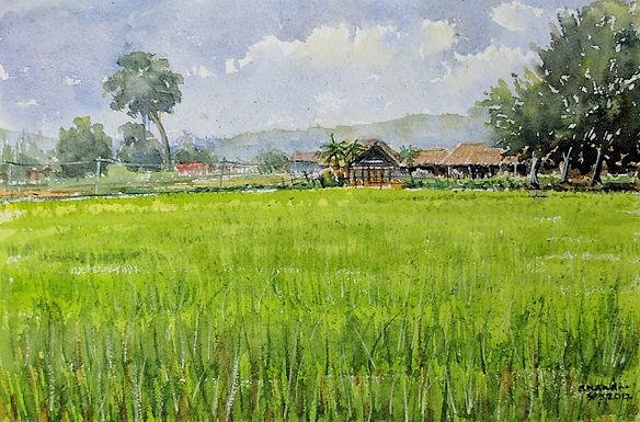 Fragrant Field