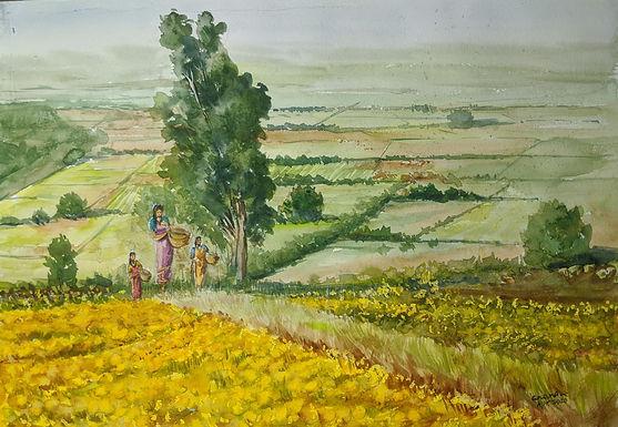 Marigold Walk