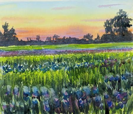 Morning Violets