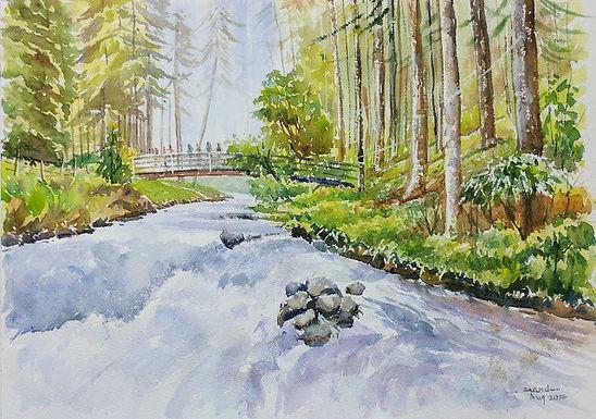Sound of Rapids