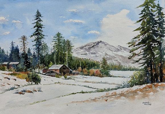 Resplendent Snow