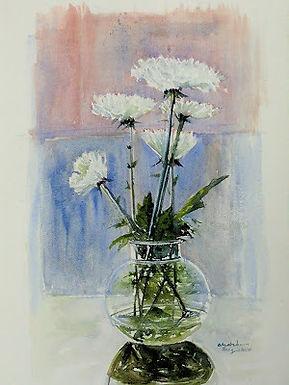 Chrysanthemum Delight!