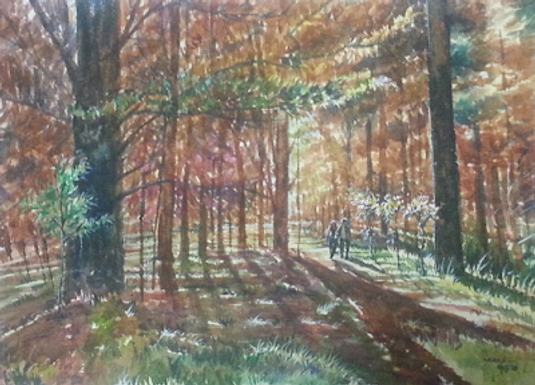 Wood Walk!