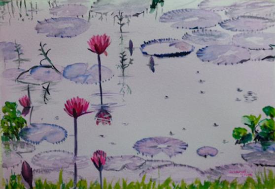 Dream Pond!