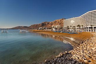 vert-dead-sea-hotel.jpg