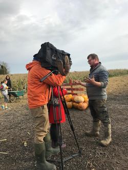 Alright-Pumpkin-RTE