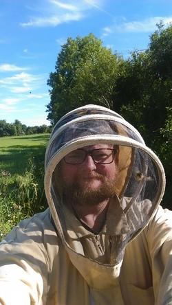 Alright Pumpkin bees and honey
