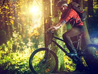 Cinco tipos de mountain Bike
