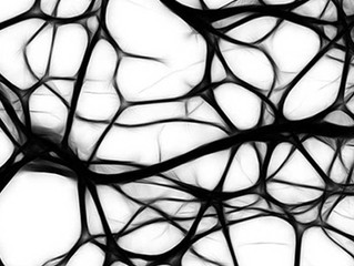 Treine seu sistema nervoso