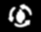 metabolism testing icon.png