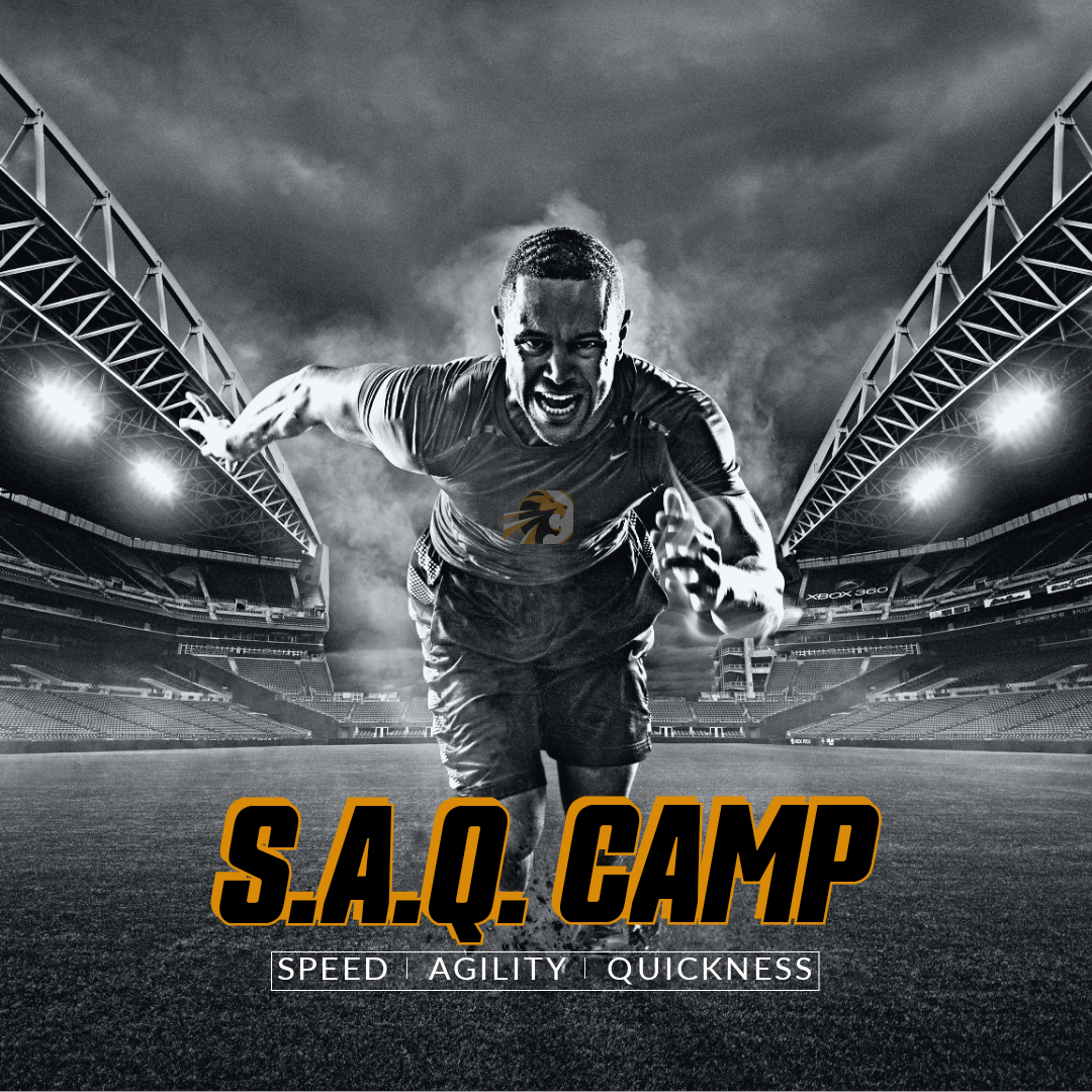 S.A.Q. Camp - HS (14 - 18)
