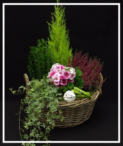 coupe-de-plantes 1_edited