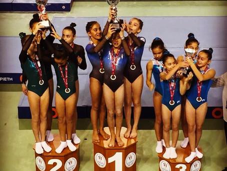 Olimpark Cimnastik Eğitimi