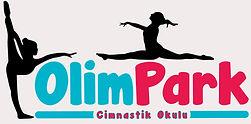 OlimPark Yeni Logo JPG_edited_edited.jpg