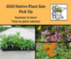 Native plant sale pickup 2020.jpg