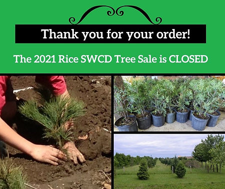 2021 Rice SWCD Tree Sale is Closed_final