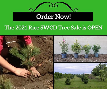 Tree sale open 2021.jpg