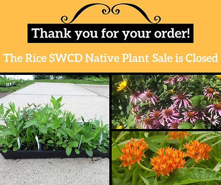 The native plant sale is closed meme.jpg