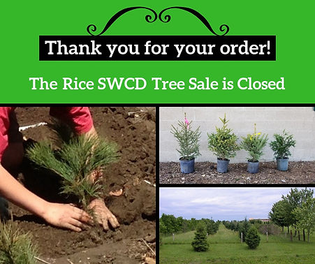 Tree sale is closed.jpg