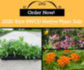 Order now plant sale meme 2020.jpg