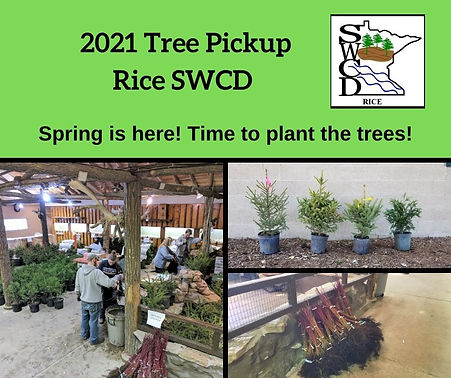tree sale pickup 2021.jpg