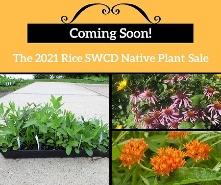 Coming Soon 2021 native plant sale.jpg