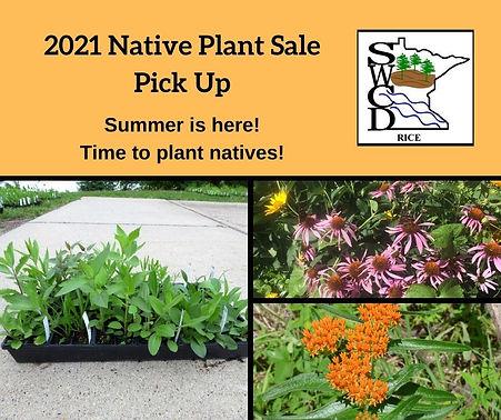 Native Plant Sale Pickup 2021.jpg