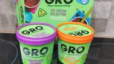 Gro Vegan Ice Cream Selection Review