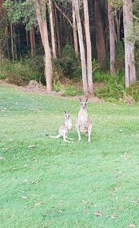 Golf Pic 2.jpg
