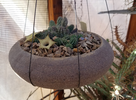 August Pre-Meeting Workshop: How to Make a Hanging Pot out of Any Pot
