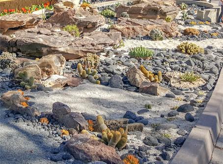 Scripps New Coral Reef Garden