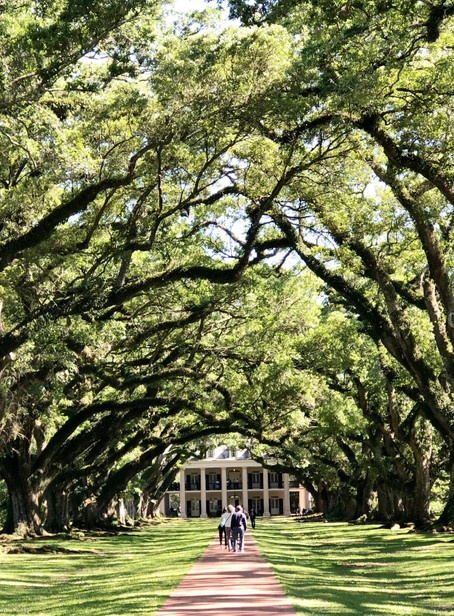 New Orleans Adventures + Travel Guide