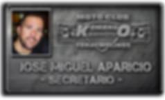 directiva jose miguel 2019.png