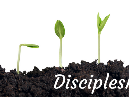 The Problem of Sin: Part 4 of a (probably) 10 part series on Discipleship