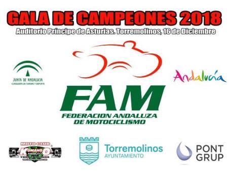 XXXIII Gala de premios FAM