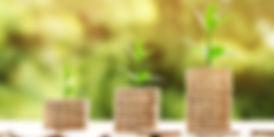 Naturopathe à Quissac | tarifs des séances individulles et collectives | Etre soi naturellement