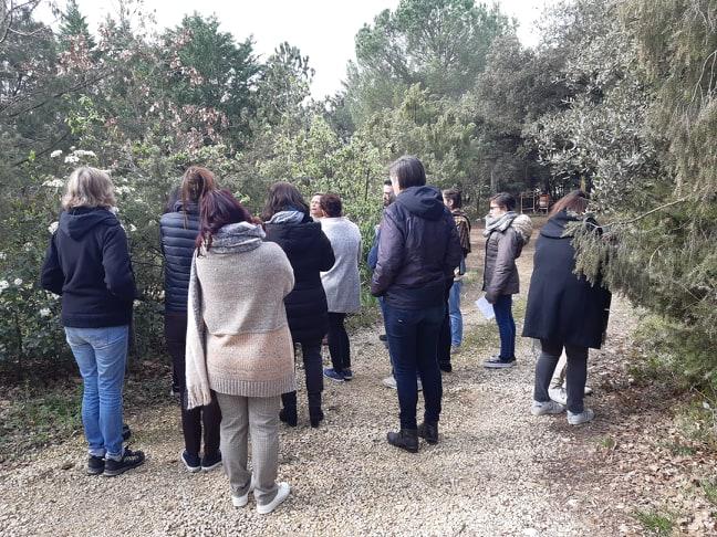 Formation gemmotherapie Nîmes Montpellier Avignon