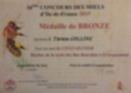 Medaille Bronze 2015.jpg