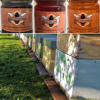 hives and honey pots.JPG
