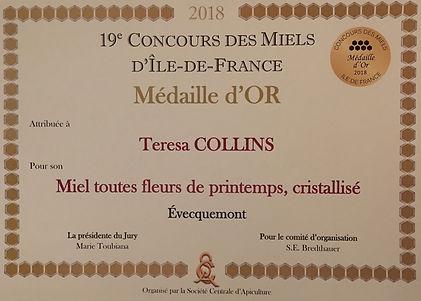 medaille or 2018.jpg