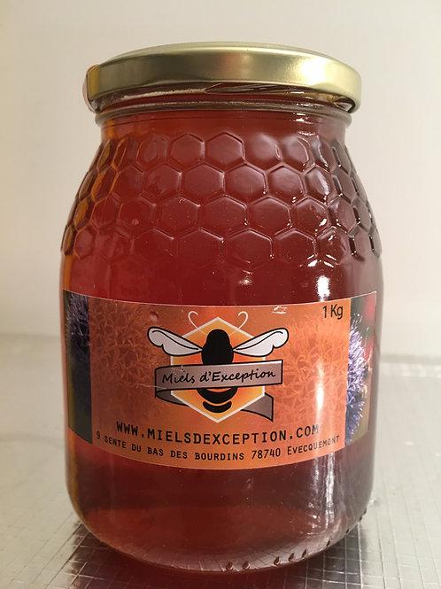 Miel d'Eucalyptus 1kg
