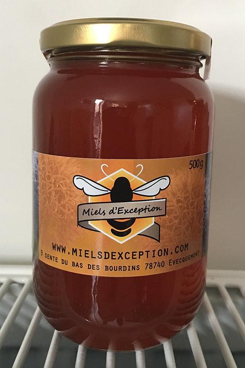 Miel de forêt côtier (1) 500g