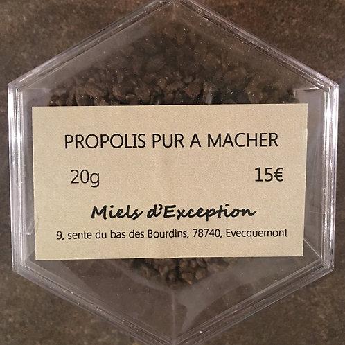 Propolis pur 20g