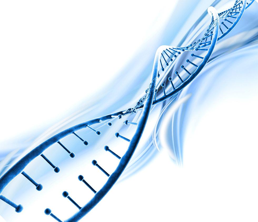 IY Notre ADN