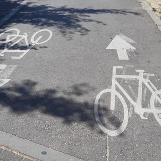 טיול אופניים מאורגן לקבוצות בפארק יהושוע