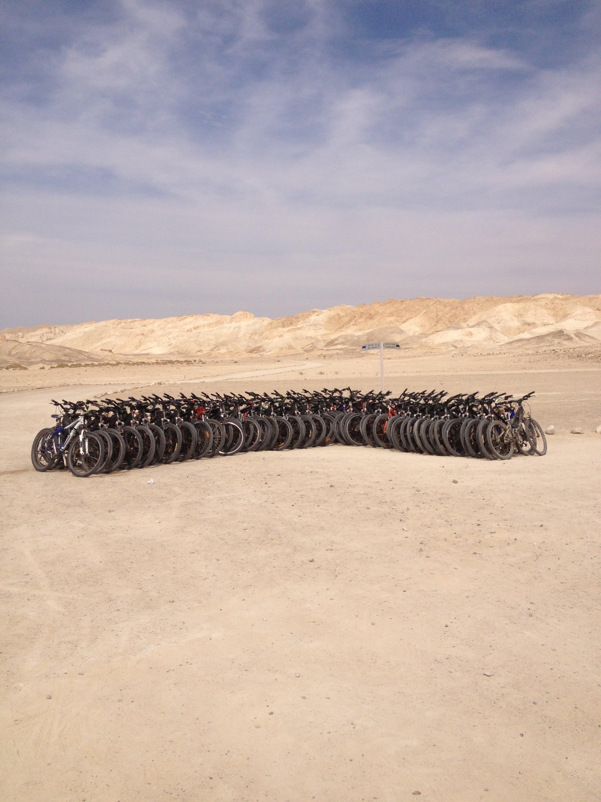 טיולי אופניים בים המלח